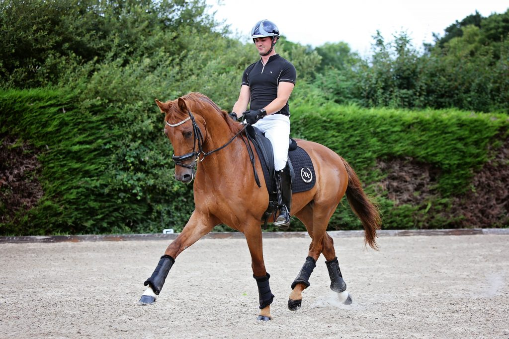 Back On Track 174 Supports Up And Coming Dressage Riders