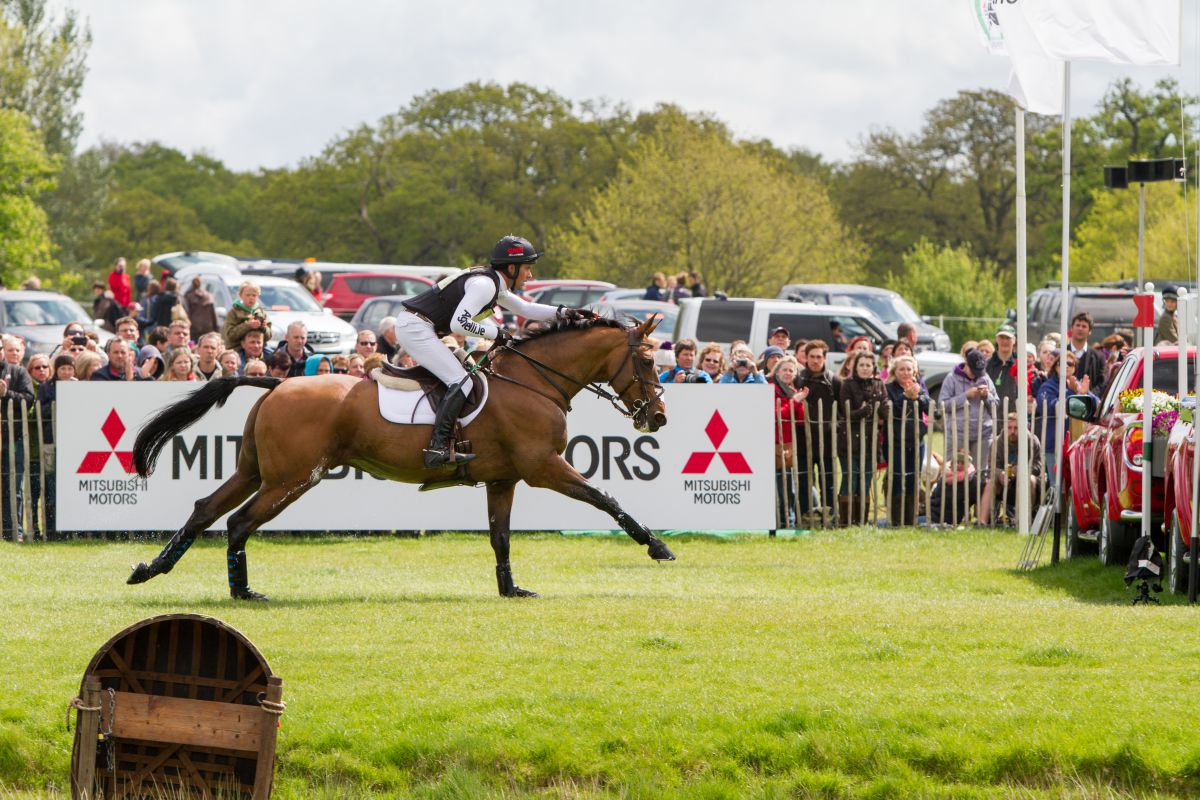 Trade Stands Badminton Horse Trials : World horse welfare calls for badminton volunteers the