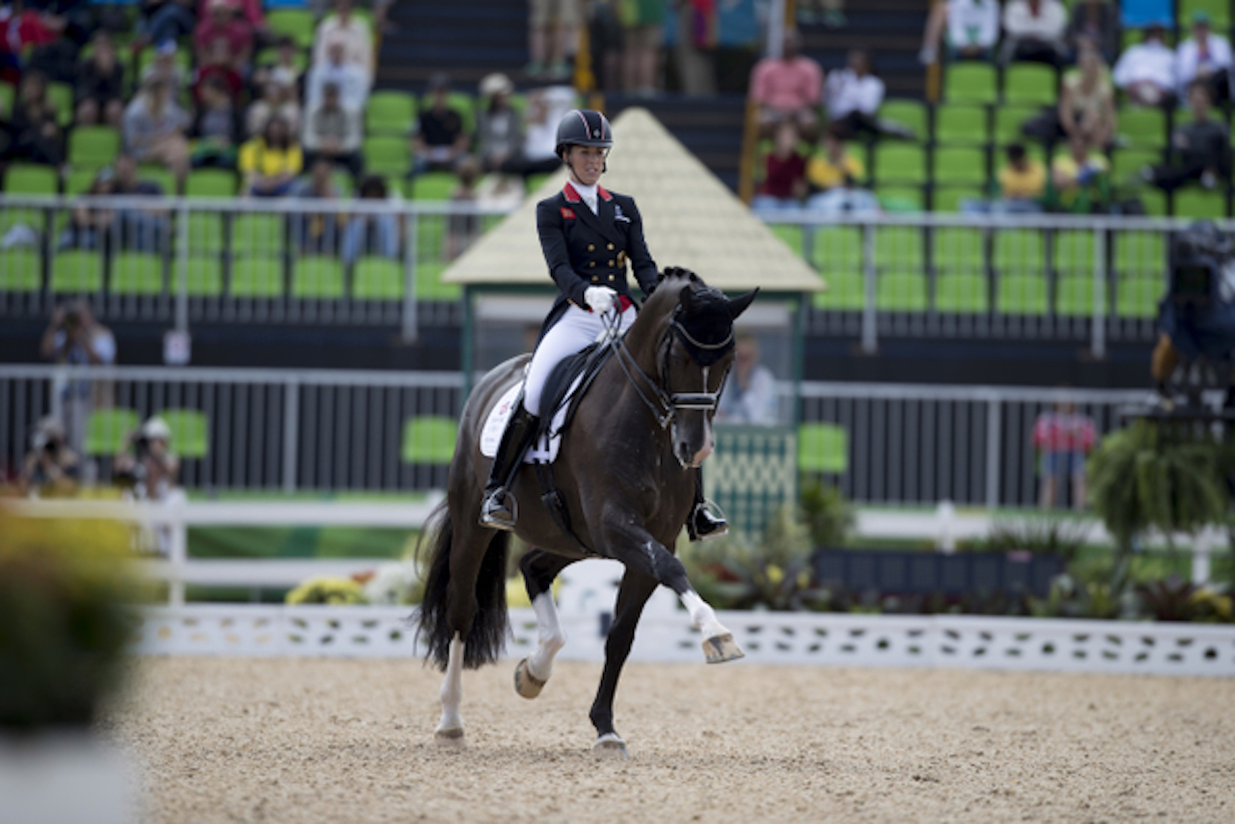 Rio olympics dressage day 2 the gaitpost for Dujardin richard