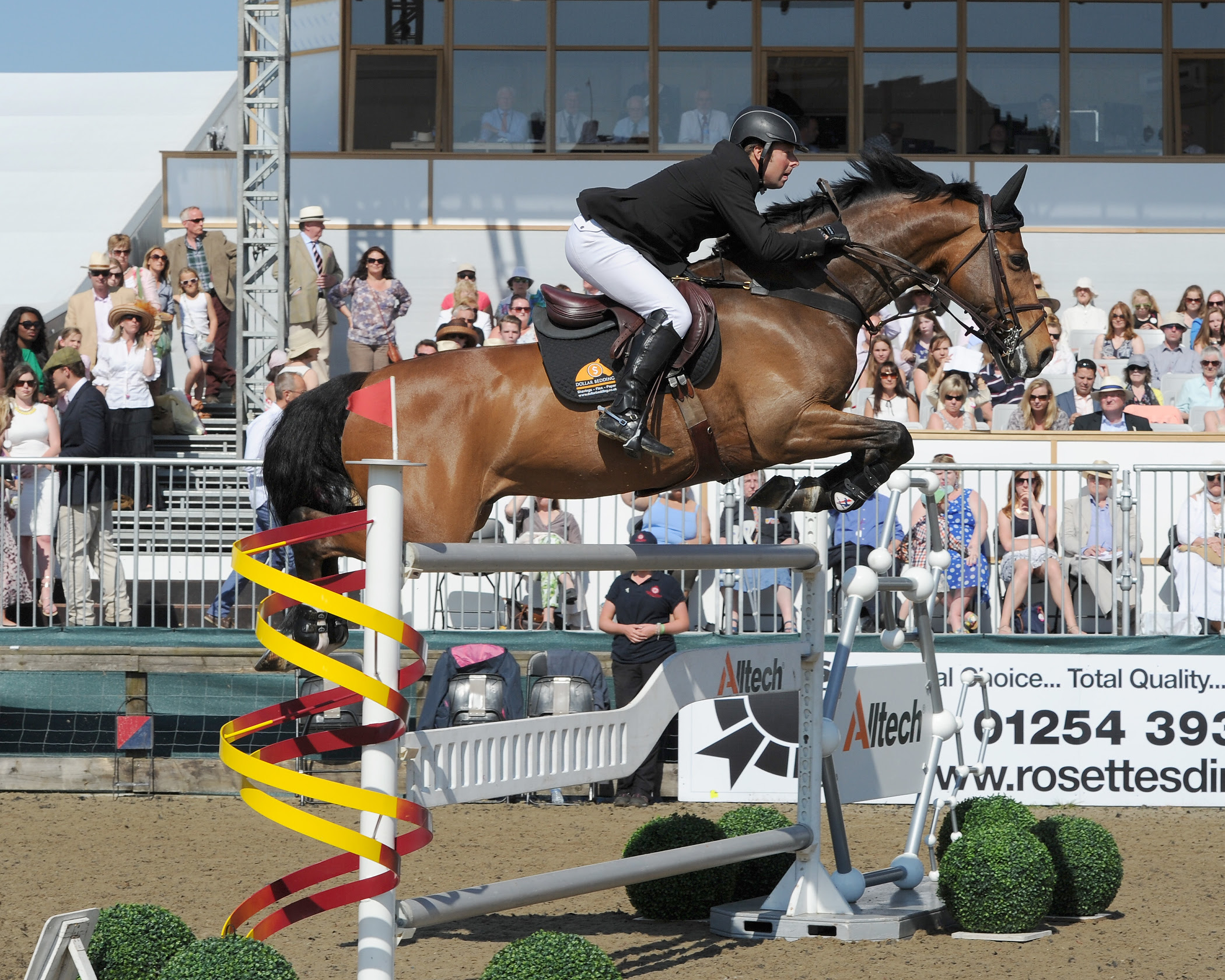 Royal Windsor Horse Show Live Streaming The Gaitpost