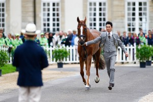The trot-up at at Haras Le Pin wearing Gieves & Hawkes Photo by Xia Yuanpu