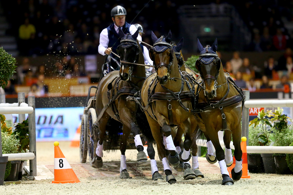 Boyd Exell was again the best driver in Bordeaux © FEI /Pierre Costabadie