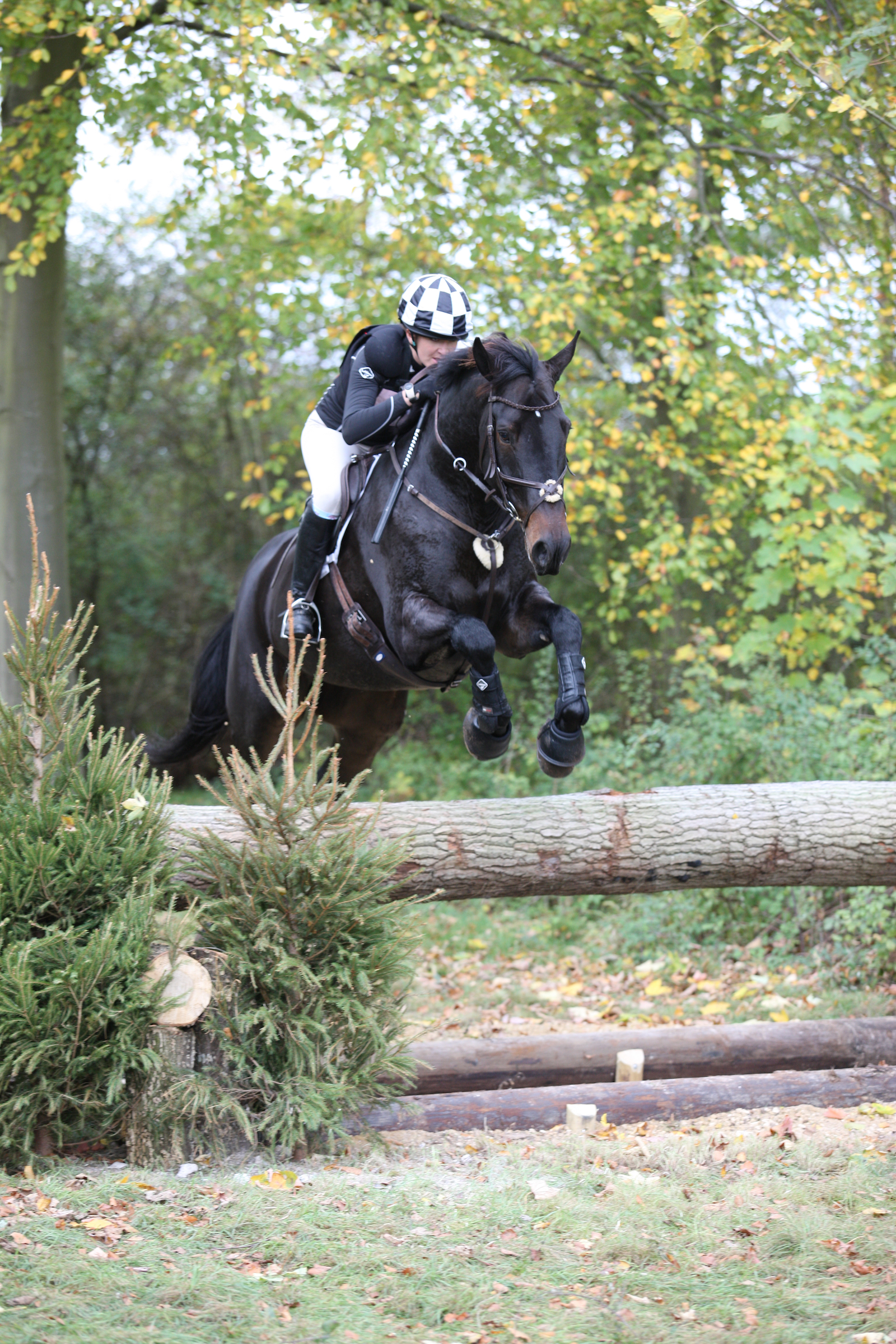 Horseheath Horse Trials Round Up 2018 |  Eventing 9