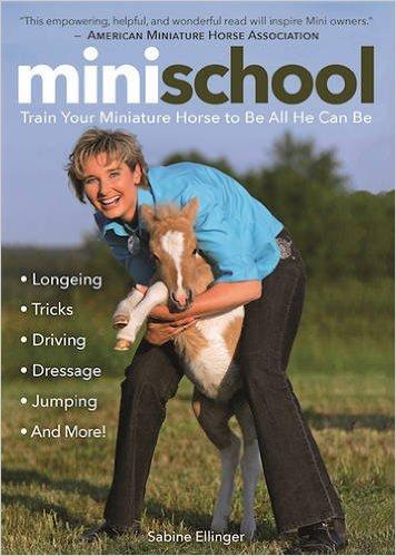 mini school book