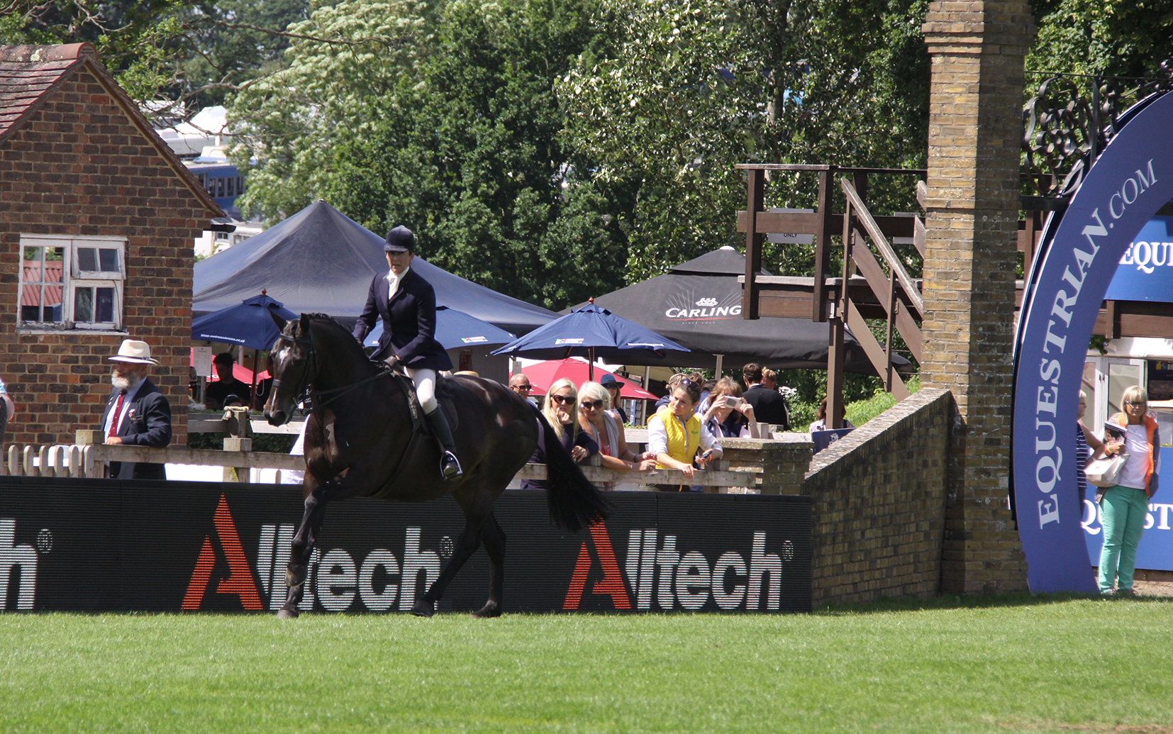 Alltech are Supporting the Showing Classes at Hickstead for a Third Year in 2017.