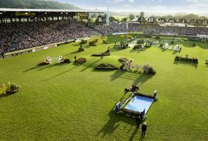 CHIOAachen2014_Hauptstadion_Strauch