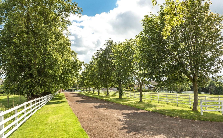 Cornhill House - driveway