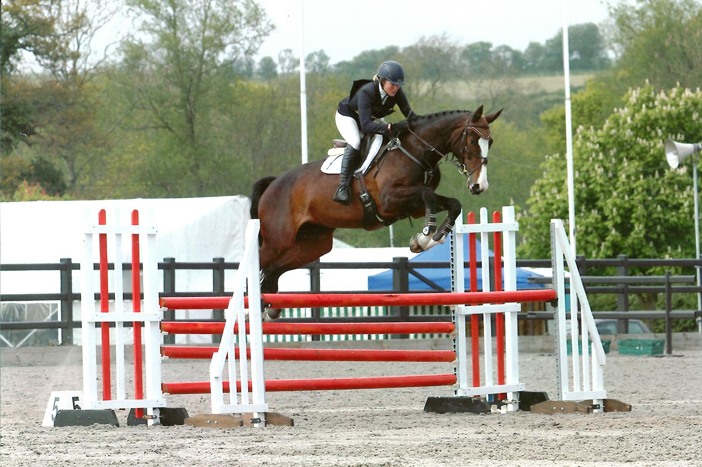 Training Feature Sharpening Your Horse S Focus Feature The Gaitpost
