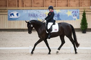 Grade 2 - Freestyle - Para-Dressage FEI European Championships Deauville 2015 - Pole International du Cheval, Deauvile, Normandy, France - 20 September 2015