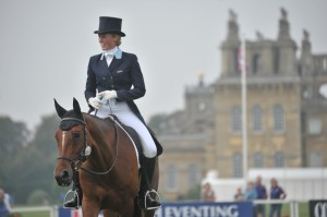 Blenheim 2014