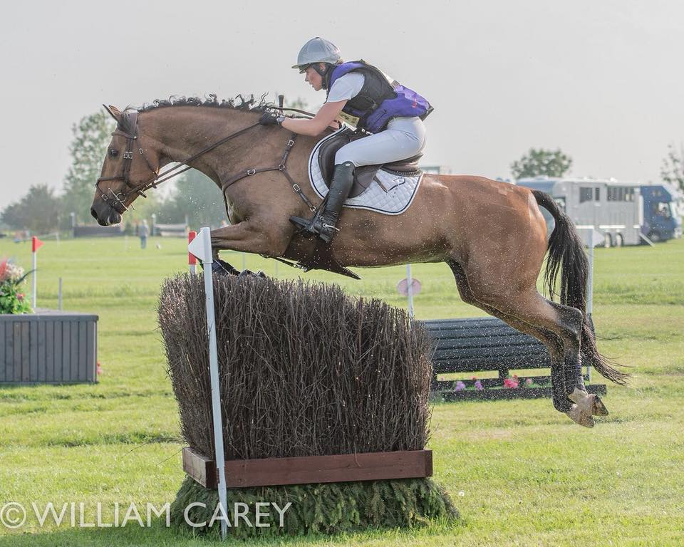 Georgie Strang em cavalos jovens para eventos | Recursos 8