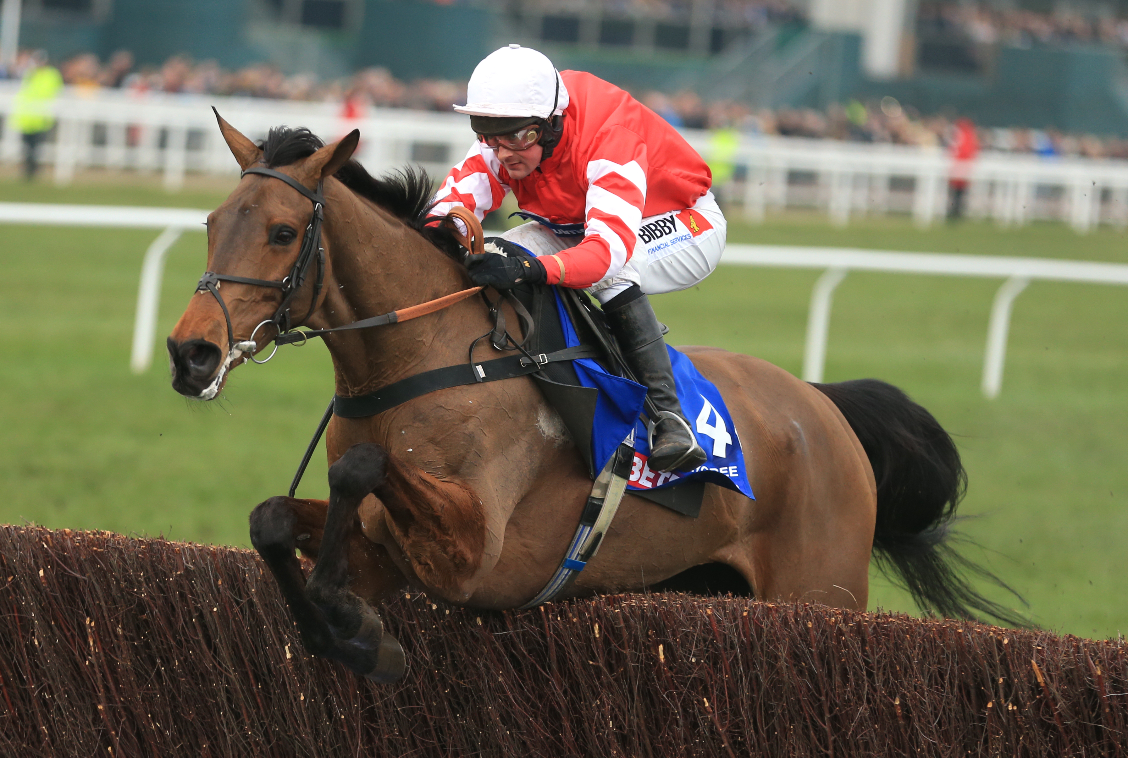 Coneygree ridden by Nico de Boinville jumps the last fence on his way to winning The Betfred Cheltenham Gold Cup Steeple Chase