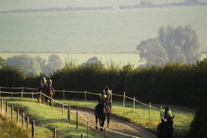 On the gallops at Anthony Honeyball copy