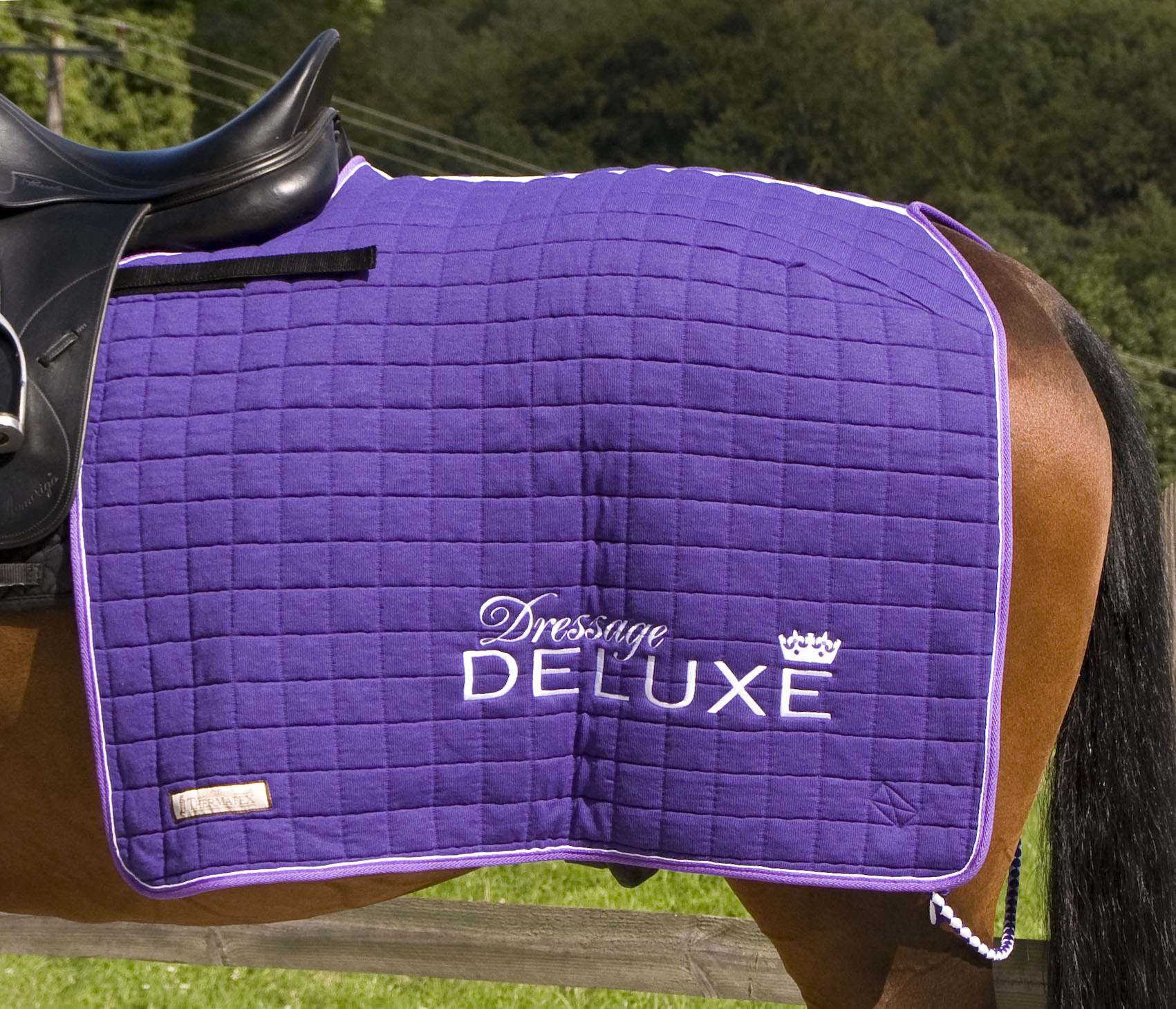 quarter-sheet-available-from-dressage-deluxe