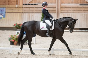Sophie Christiansen (GBR) & Athene Lindebjerg - Grade Ia - Team Test - Para-Dressage FEI European Championships Deauville 2015 - Pole International du Cheval, Deauvile, Normandy, France - 18 September 2015