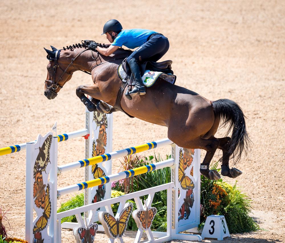 Stephan de Freitas Barcha and the horse is Landpeter Do Feroleto © Arnd Bronkhorst