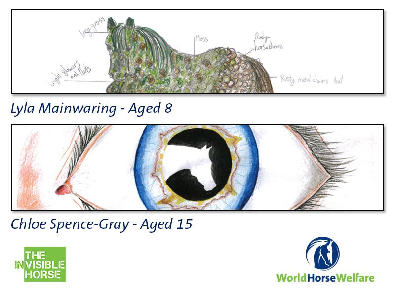 World Horse Welfare Badminton Fence Design Competition Winners