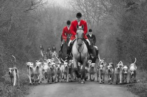 Neil Coleman leads the Cottesmore Hunt hounds at Castle Bytham
