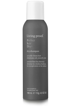 Perfect hair Day Dry Shampoo</a>