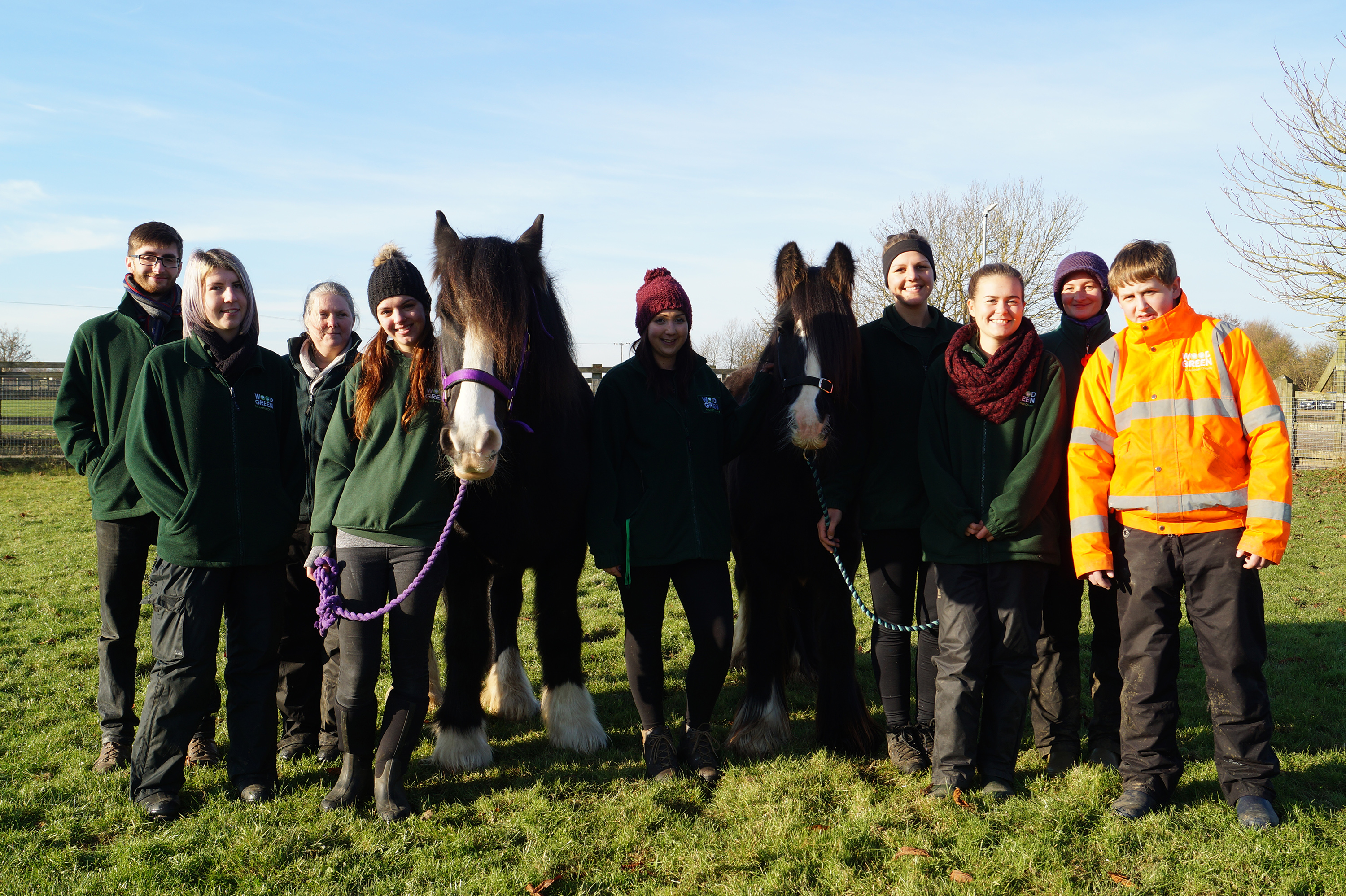 Bilbo and Fleetwood with the Wood Green team © Redwings Horse Sanctuary