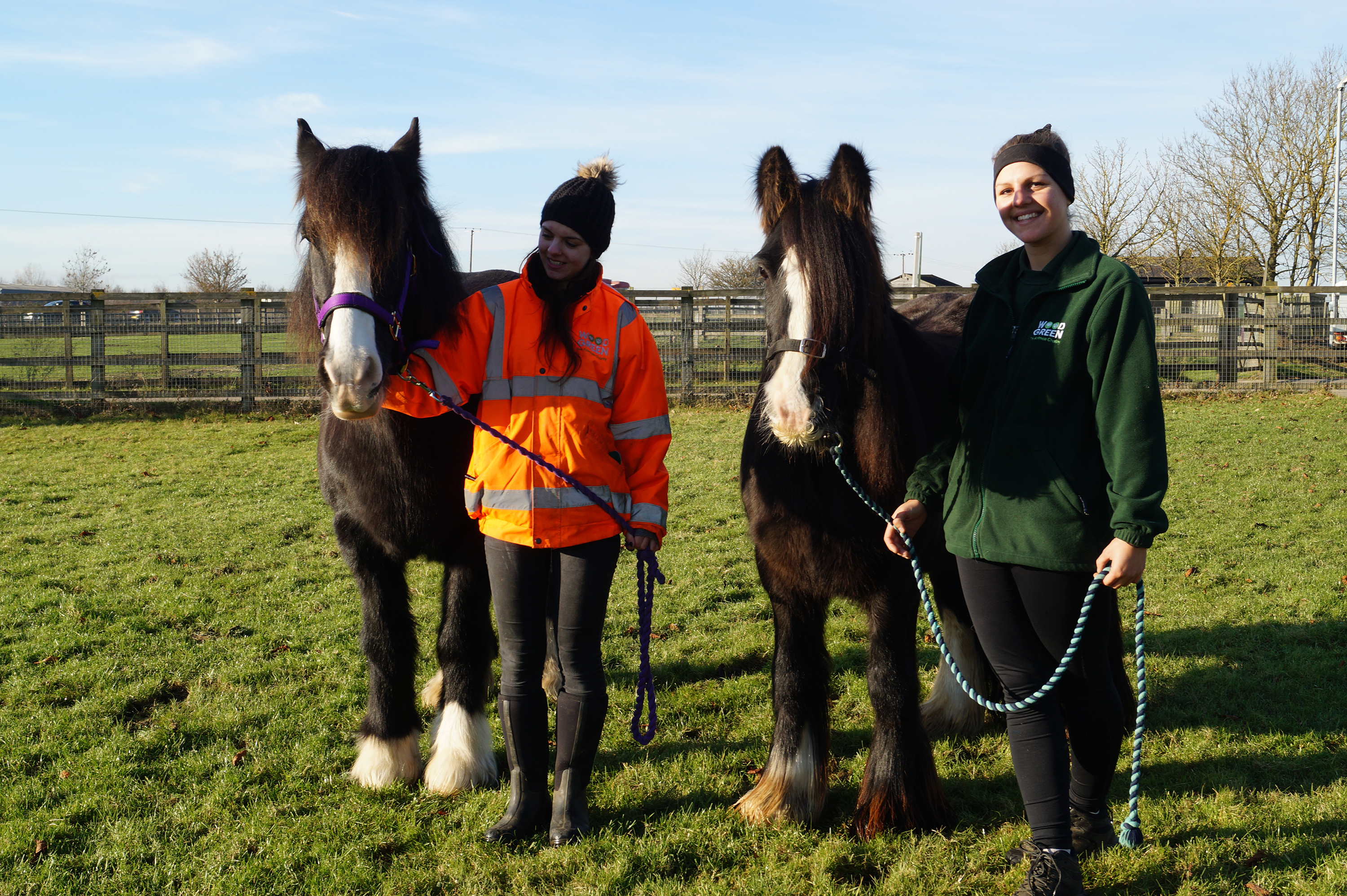 Wood Green Field Animal Rehomers Sarah Spolton and Emily Price with Bilbo and Fleetwood  © Redwings Horse Sanctuary