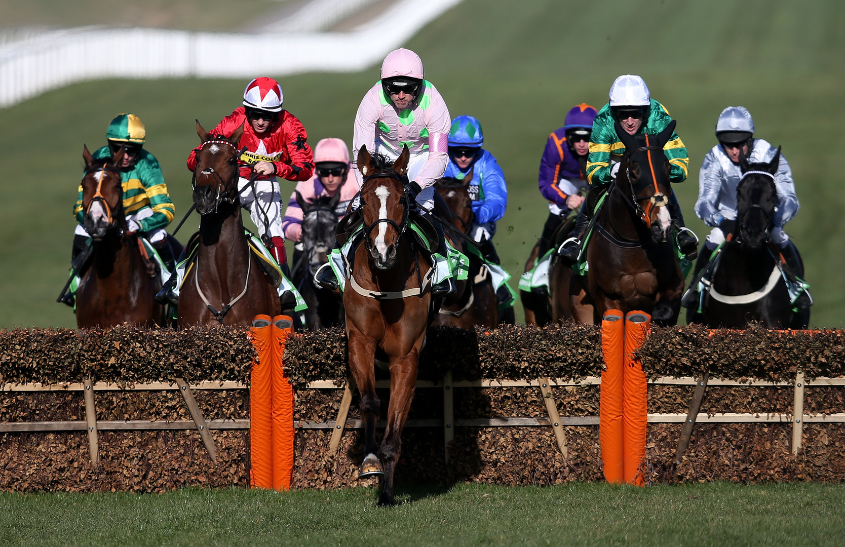 Faugheen ridden by Ruby Walsh on their way to victory in the Stan James Champion Hurdle Challenge Trophy © Cheltenham Racecourse