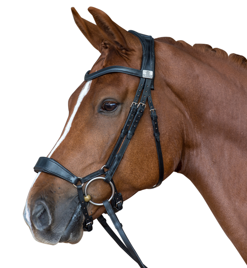 the-fairfax-performance-bridle.4