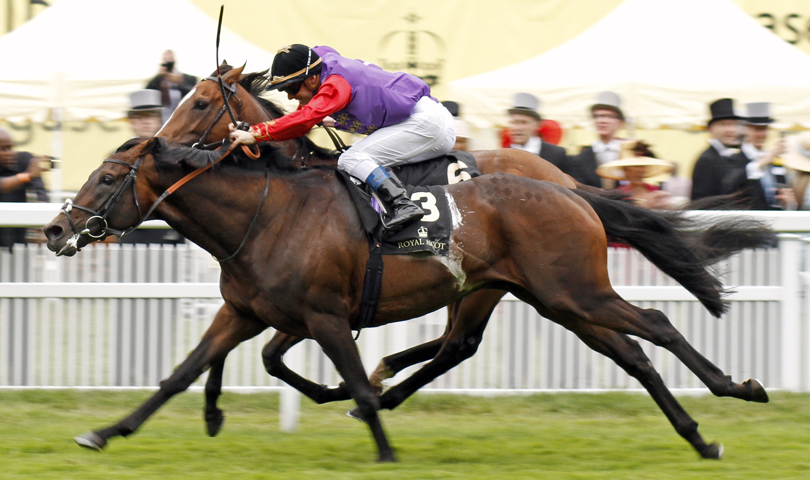 DARTMOUTH (Olivier Peslier) wins The Hardwicke Stakes Royal Ascot 18 Jun 2016 - Pic Steven Cargill / Racingfotos.com